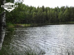 Stora Stocksjön 10