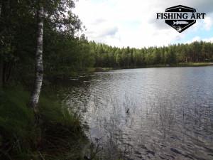 Stora Stocksjön 8