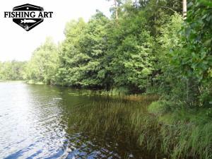 Stora Stocksjön 4