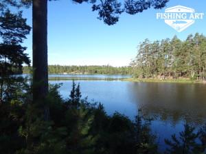 Stensjön 11