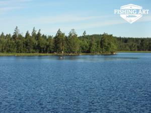 Stensjön 8
